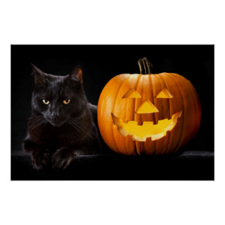 Halloween pumpkin and black cat poster