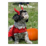 Halloween Shih Tzu dog Cards