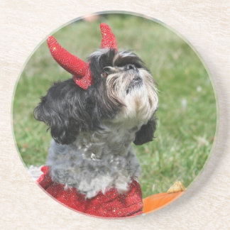 Halloween Shih Tzu dog Coaster
