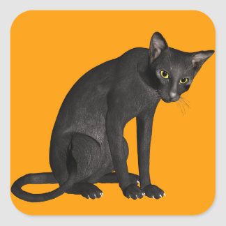 Halloween Spooky Scary Black Cat Square Sticker