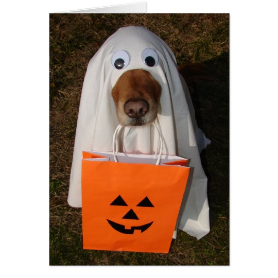 Halloween Treats with Ghost Dog and Goodie Bag