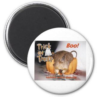 Halloween Trick or Treat 6 Cm Round Magnet