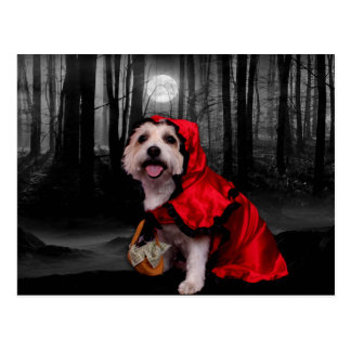 Halloween - Westie - Lady Postcard