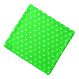 Halloween White Spiders on Lime Green Bandana