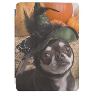 Halloween Witch Dog iPad Air Cover