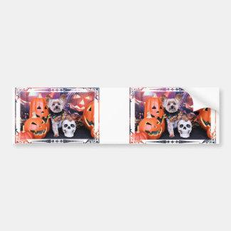 Halloween - Yorkie - Vinnie Bumper Stickers