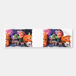 Halloween - YorkiePekeX - Clara Bumper Stickers