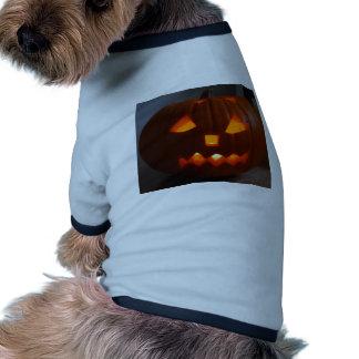 Halloweeny man dog clothing