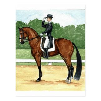 Halt, Salute at X Dressage Art Bay Horse Postcard