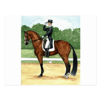 Halt, Salute at X Dressage Art Bay Horse Postcard