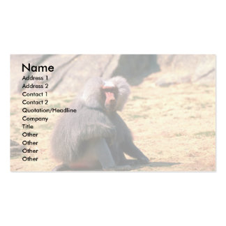 Hamadryas Baboon-adult male sitting Business Cards