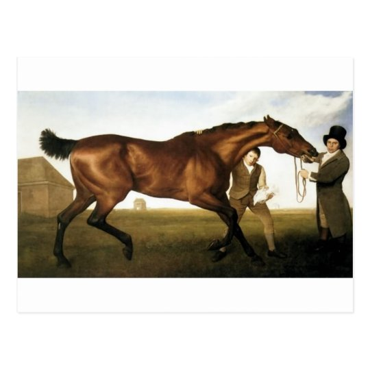 Hambletonian by George Stubbs Postcard