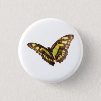 HAMbWG - Button - Yellow Swallowtail