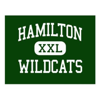 Hamilton - Wildcats - High - Milwaukee Wisconsin Postcard