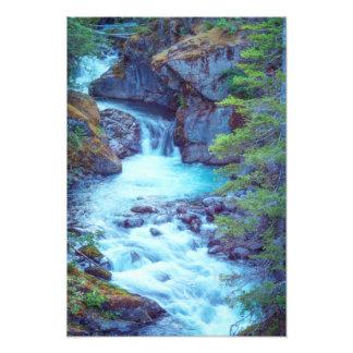Hamma Hamma Creek Photo Print