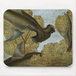 Hammerhead Shark Coral Underwater Scene Mouse Mat