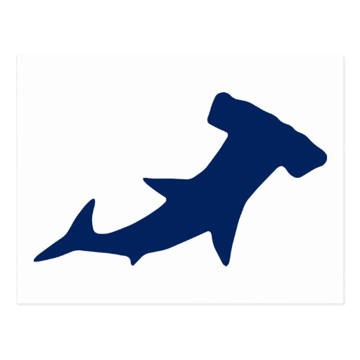 Hammerhead Shark Post Card