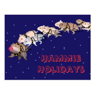 Hammie Holidays Postcard