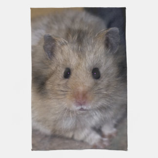 Hammie Kitchen Towel