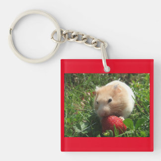 Hammies With Strawberries Double-Sided Square Acrylic Key Ring
