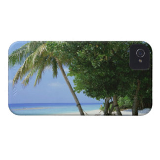 Hammock and Palm Tree iPhone 4 Cover