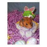 Hammy Easter Basket Post Card