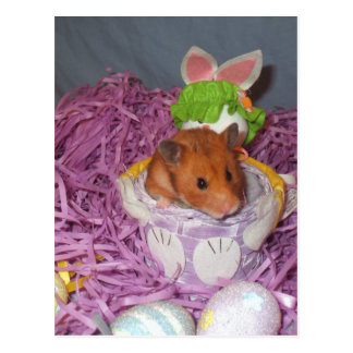 Hammy Easter Basket Postcard