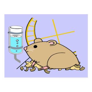 Hammy the Hamster Postcard