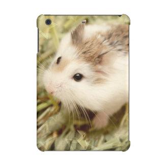 Hammyville - Cute Hamster