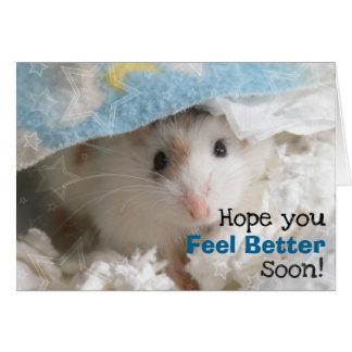 Hammyville - Cute Hamster Get Well Soon Card
