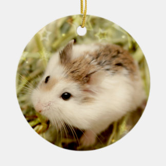 Hammyville - Cute Hamsters Christmas Ornament