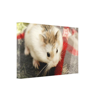 Hammyville - Hamster Holiday Canvas Print