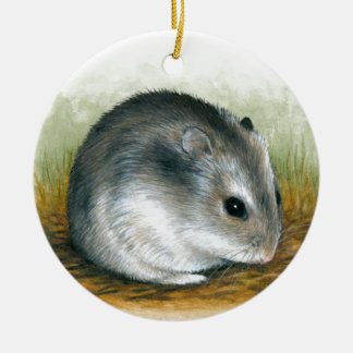 Hamster 25 christmas ornament