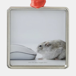 Hamster and Computer mouse Christmas Ornament
