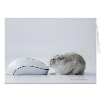 Hamster and Computer mouse Greeting Card