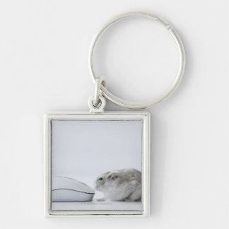 Hamster and Computer mouse Silver-Colored Square Key Ring