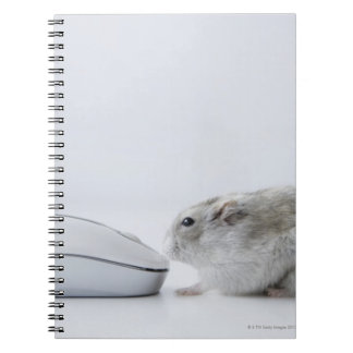 Hamster and Computer mouse Notebooks