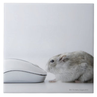 Hamster and Computer mouse Tile