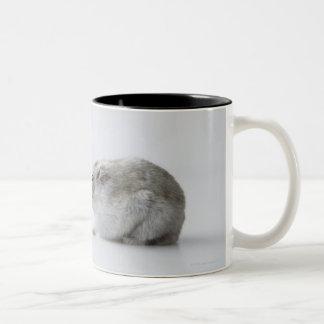 Hamster and Computer mouse Two-Tone Coffee Mug