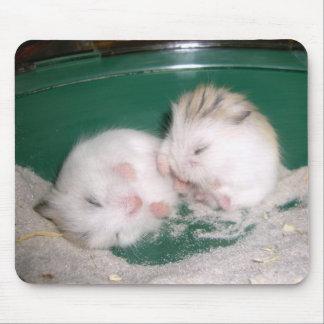 Hamster babies (mousepad) mouse pad