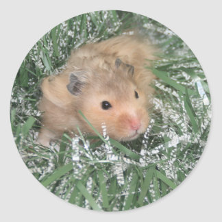 Hamster Christmas Classic Round Sticker