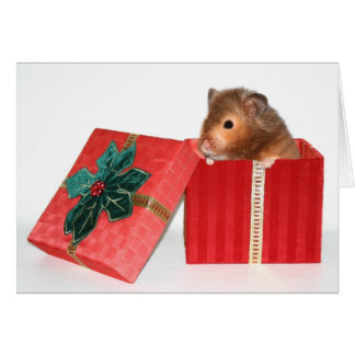 Hamster Christmas gift Card