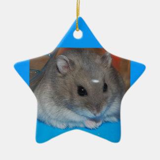 Hamster Christmas Ornament