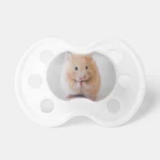 hamster dummy