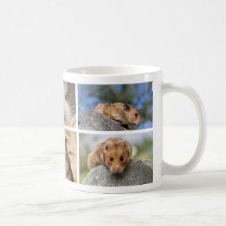 Hamster/Gerbil Photo Collage Mug