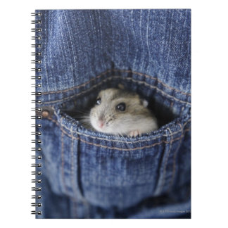 Hamster in pocket spiral notebook