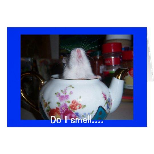 Hamster In Teapot Card