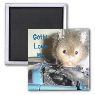 Hamster Love Magnet