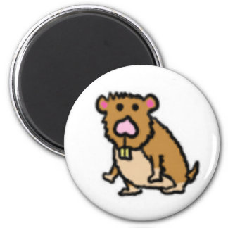 Hamster Magnet