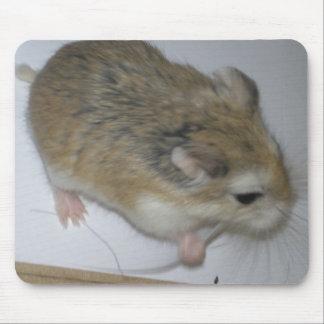 Hamster Mat Mouse Mat